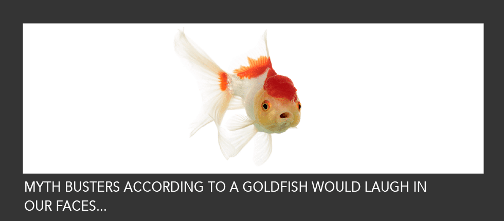 Goldfish and Business Myths